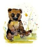 Cachorros de oso Ejemplo del dibujo de la mano de la acuarela ilustración del vector