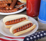 Cachorros quentes do piquenique do feriado Fotografia de Stock Royalty Free