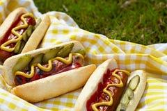 Cachorros quentes grelhados com mostarda, ketchup e apreciação Imagens de Stock