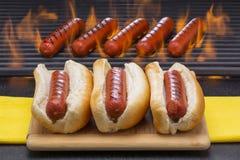 Cachorros quentes grelhados nos bolos e na grade do assado Foto de Stock Royalty Free