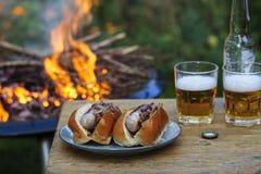 Cachorros quentes pelo fogo do acampamento Imagens de Stock Royalty Free