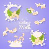Cachou in melkplons Grote plonsreeks De melkstroom van de veganist giet de alternatieve organische hazelnoot Niet zuiveldrank of  stock illustratie