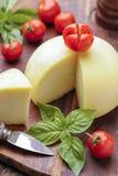 Caciotta, queijo italiano fotografia de stock