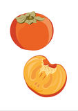 Caco frais illustré Photo stock