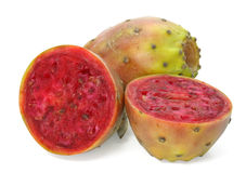 Cactaceous fig Stock Photos