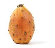 Cactaceous fig isolated on white background. Macro photo stock photo