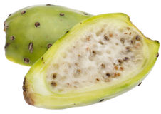 Cactaceous Fig Prickly Pear Stock Photo