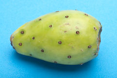 Cactaceous Fig Prickly Pear Royalty Free Stock Images