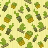 Cacti Royalty Free Stock Image