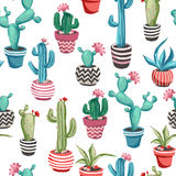Cacti flower seamless pattern. vector illustration