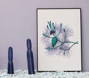 Cacti And Frame Stock Image