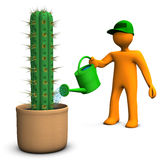 Cacti Gardener. Orange cartoon character watering a big cactus, San Pedro, on the white background Stock Photos