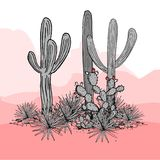 Cacti group. Prickly pear cactus, blue agaves, and saguaro. Mexico hand drawn card.   Stock Photos