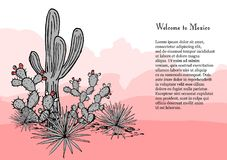 Cacti group. Prickly pear cactus, blue agaves, and saguaro.  Stock Photography
