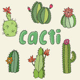 Cacti Royalty Free Stock Images