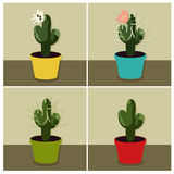 Cacti illustrations Royalty Free Stock Images