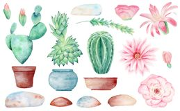 Free Cacti In Pots Hand Drawn Watercolor Raster Illustration Set Stock Images - 159558454