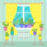 Cacti plants in pots on window, flat style Stock Photos
