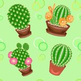 Cacti in pots on a green background. A fancy pattern. Suitable as wallpaper on, as a background for packaging products. Creates a. Cheerful mood. Vector vector illustration