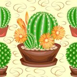 Cacti in pots on a green background. A seamless pattern. Suitable as wallpaper on, as a background for gift wrapping. Creates a stock illustration