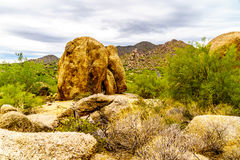 Cacti, Shrubs and large Rocks and Boulders in the Arizona Desert. Cacti, Shrubs and large Rocks and Boulders in the desert near Carefree Arizona, USA Royalty Free Stock Image