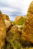 Cacti, Shrubs and large Rocks and Boulders in the Arizona Desert Royalty Free Stock Photography