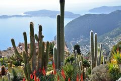 Cacti and views of the French Riviera Royalty Free Stock Photo