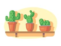 Cacti on wooden shelf. Thorny cactus house plants. Vector illustration Royalty Free Stock Photos