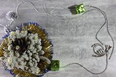 Cacto de Natal Imagem de Stock Royalty Free