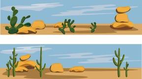 Cacto y desierto