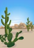 Cacto y desierto Fotos de archivo libres de regalías