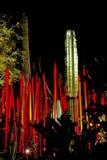 Cacto y lanzas del Saguaro Imagen de archivo
