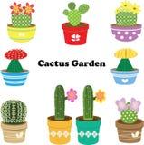 Cactoo trädgård stock illustrationer
