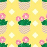Cactos bonitos, vasos de flores Teste padrão sem emenda com cactos bonitos Natureza, mola Ilustração bonito Foto de Stock Royalty Free