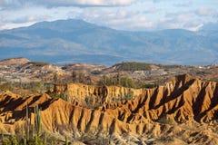 Cactos grandes no deserto vermelho, deserto do tatacoa, Colômbia, latino amer fotos de stock royalty free