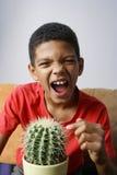Cactus émouvant de garçon images libres de droits