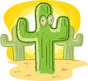 Cactus Royalty Free Stock Photos