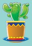 Cactus illustration de vecteur