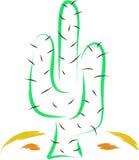 cactus Foto de archivo