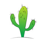 Cactus Immagini Stock Libere da Diritti