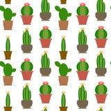 Cactus Imagenes de archivo