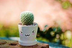 Cactus Photos libres de droits