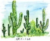 Cactus alto del punto di riferimento di schizzo dell'illustrazione grande Fotografia Stock Libera da Diritti