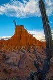 Cactus alto e formazione rocciosa Immagine Stock