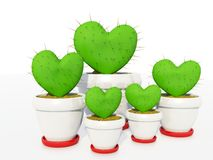 Cactus as heart Stock Photography