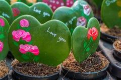 Cactus au lieu de l'amour Image stock
