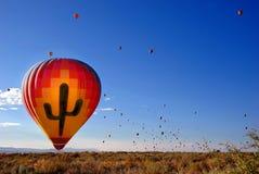 Cactus balloon Stock Image