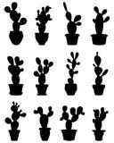 Cactus bij ingemaakt vector illustratie