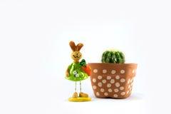 Cactus bij plastic pot en ceramisch konijn Stock Afbeeldingen