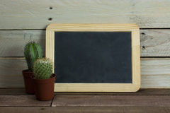 Cactus and blackboard against a wood background Stock Photography